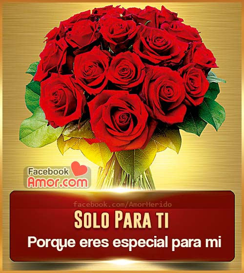 ramos de rosas rojas amor