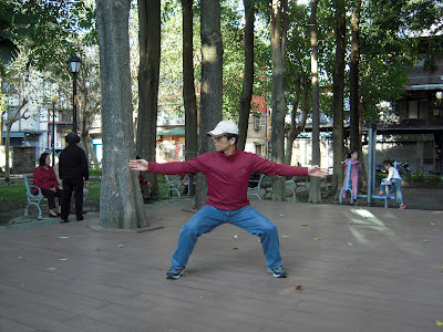 "Photo of ""Dakai"" being demonstrated, from a Chinese-language blog on Bajiquan."
