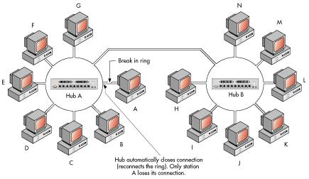 UncopyrightableS: Network Topologies
