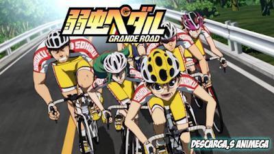 Yowamushi Pedal: Grande Road 24/24 Audio: Japones Sub: Español Servidor: Mega/Mediafire