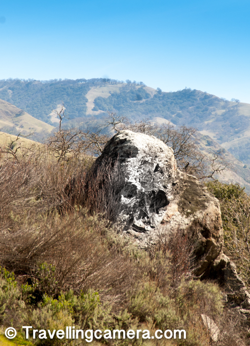 As we walking around the main road inside the park, Varun noticed this rock which looked liked a skull. Initially I couldn't make it out but Varun and Jacek were able to make out. Finally I was also convinced and clicked this photograph :). I would call it Skull rock in Sunol Regional Wilderness park.
