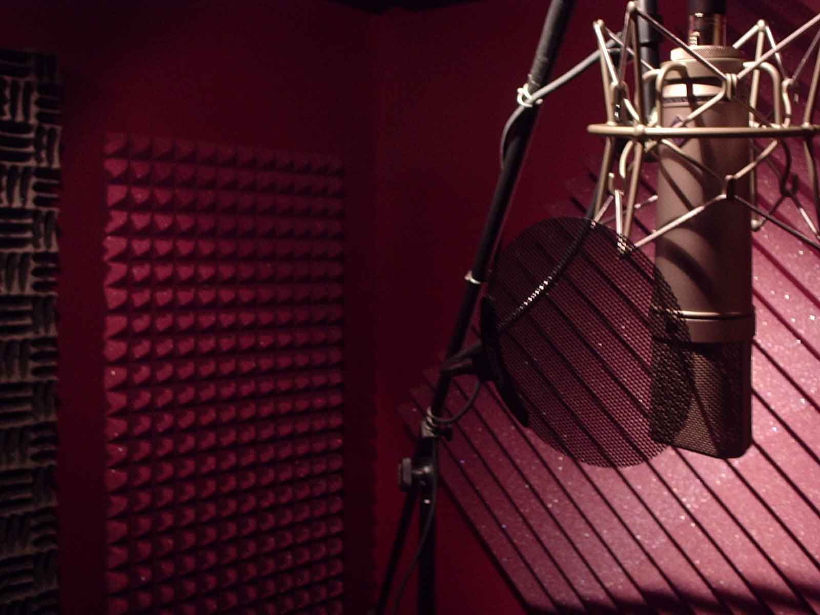 Booth Mic Booth Veneers Pic