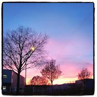 couché de soleil ciel rose
