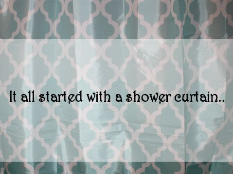Daughters Bathroom Makeover, it all started with a shower curtain