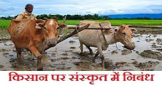 किसान पर संस्कृत में निबंध। Essay on Farmer in Sanskrit