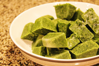 Kombucha Kale Cubes for Smoothies healthy food prep organic