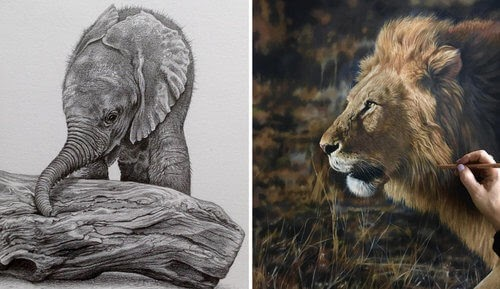 00-Julie-Rhodes-Color-Pencil-Wild-Animal-Drawings-www-designstack-co