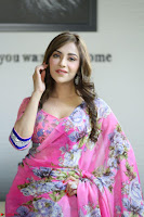 Actress Angela Krislinzki in Pink Saree Blouse Exclusive Pics March 2017 ~  105.JPG