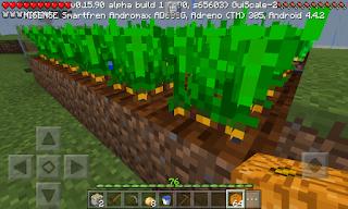 Cara Berkebun di Minecraft
