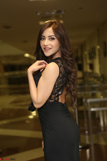 Angela Krislinzki in Transparent Black Gown at Rogue Movie Teaser Launch 1st March 2017 029.JPG