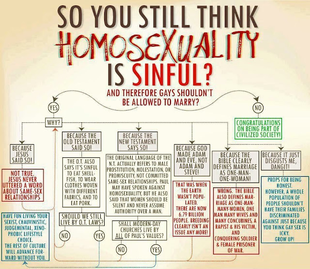 So You Think Homosexuality Is Sinful?