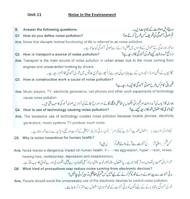0th class unit .11 Noise in the Environment questions answers