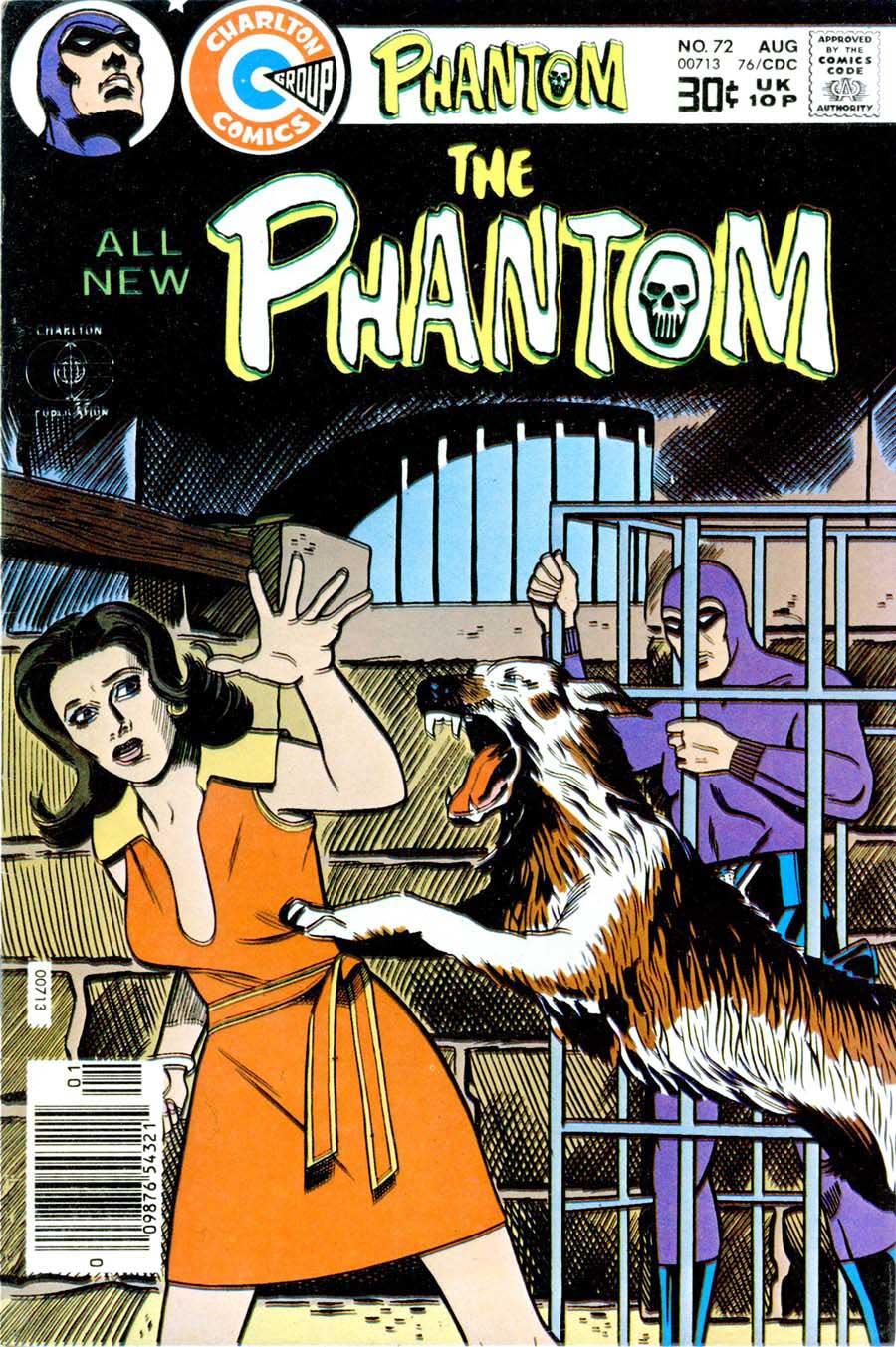 The Phantom v2 #72 - mis-attributed Don Newton art & cover ...