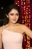 Sayesha Spicy Half Shoulder Cream Gown at Zee Telugu Apsara Awards 2017 23.JPG