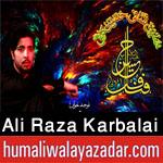 http://www.humaliwalayazadar.com/2017/10/ali-raza-karbalai-nohay-2018.html