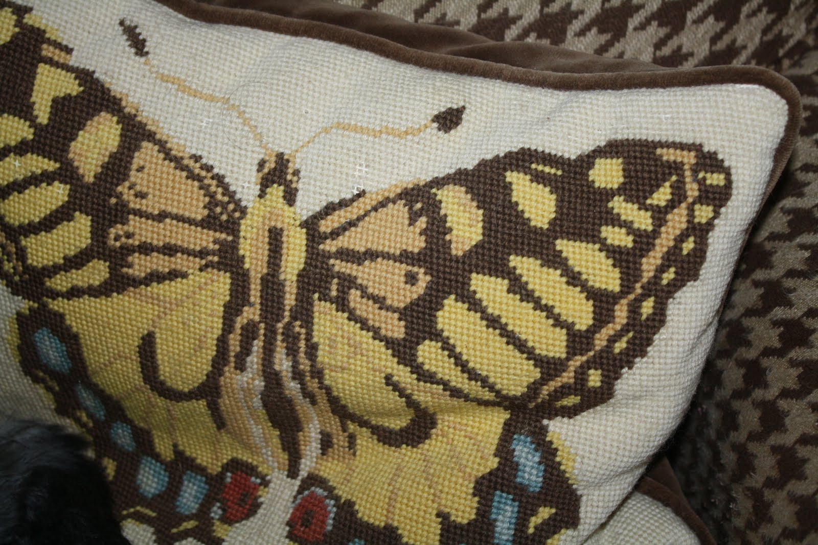 pottery barn butterfly chair steel price in kolkata i have a big story to tell what do butterflies lazy dogs