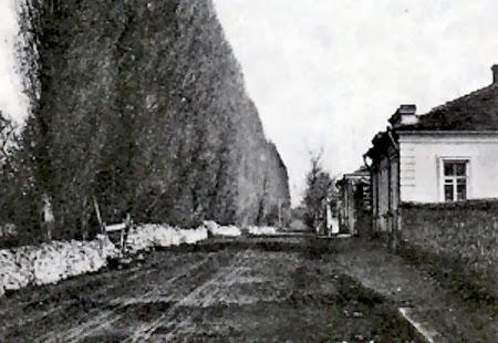 Бульвар Крым-Гирея в Симферополе