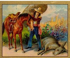 Dongeng Kuda dan Keledai yang Sarat dengan Beban (Aesop) | DONGENG ANAK DUNIA