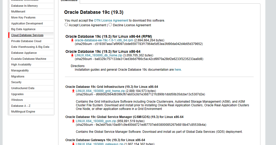 Oracle 19c Xe