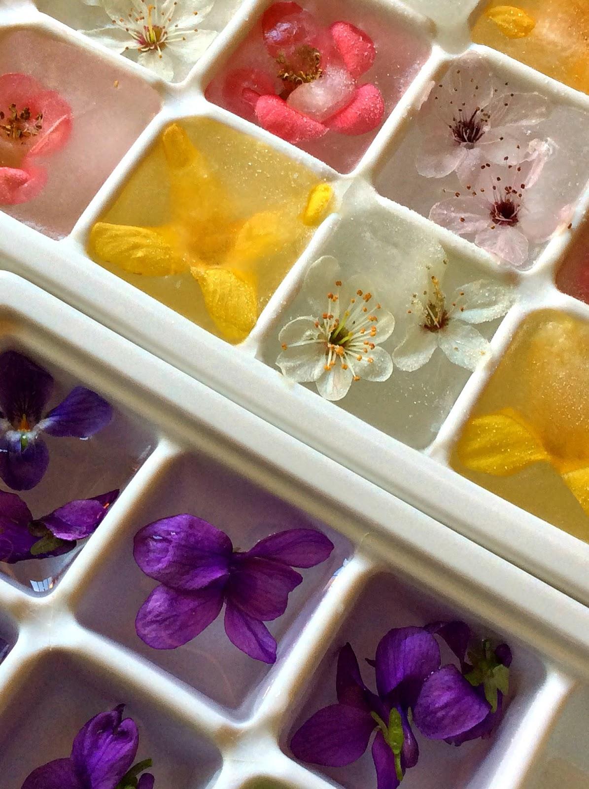 fare i cubetti di ghiaccio con i fiori