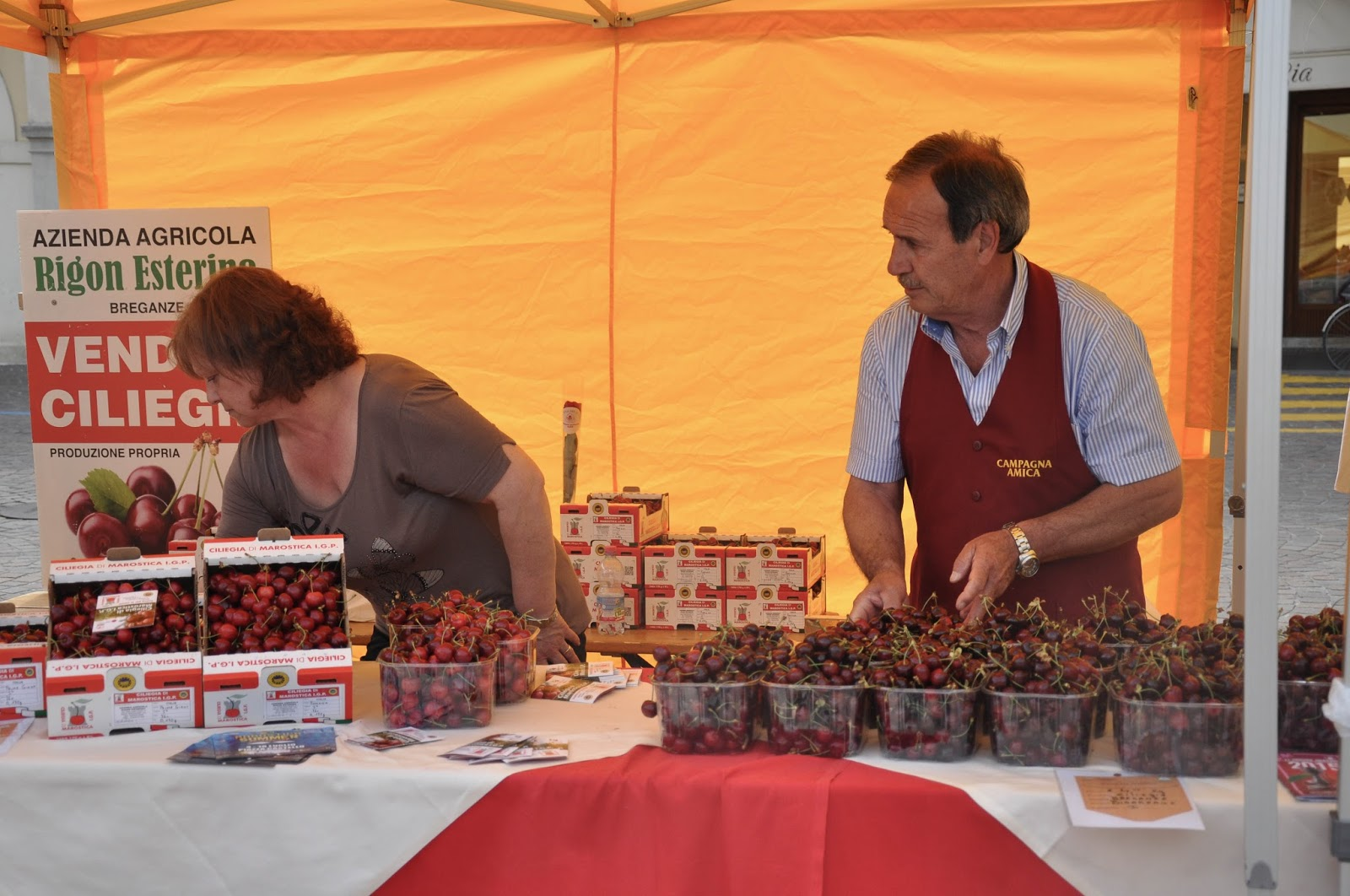 Farmers with their cherries ready for sale, Cherry Show Market, Marostica, Veneto, Italy