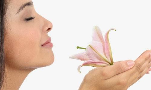 Cara Mencegah Kerutan di Wajah Secara Alami