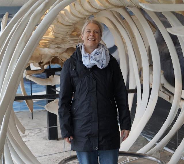 Das Nordsee-Ozeanarium in Hirtshals: Ein tolles Ausflugsziel für Familien in Nord-Jütland. Das Walforscherhaus faszinierte unsere Kinder und mich als Küstenmami.