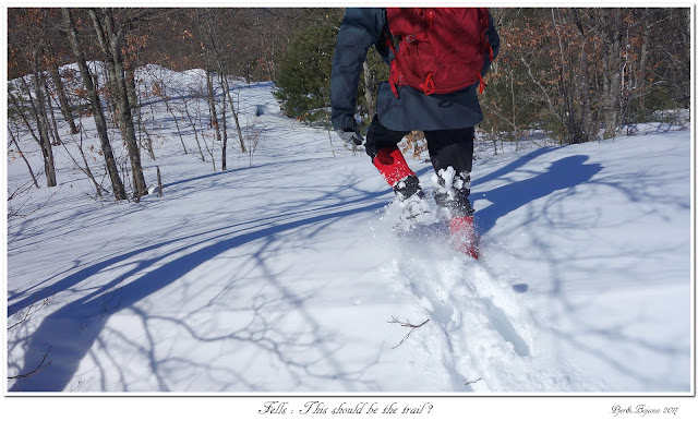 Fells: This should be the trail?