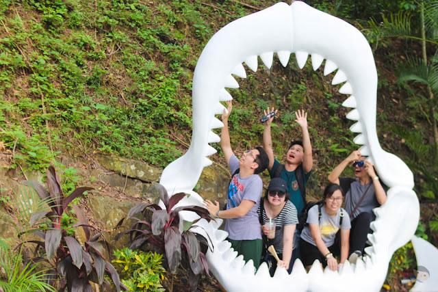 FSRM 2017 in Ocean Park - Shark