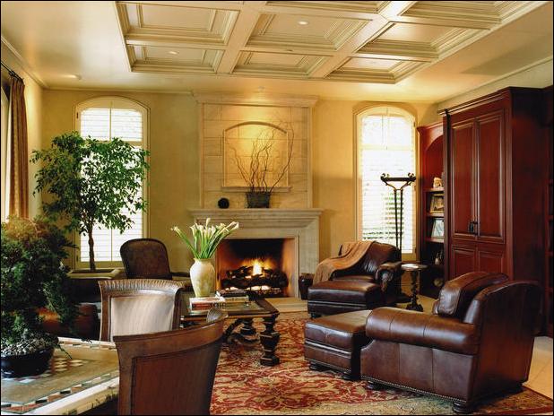 transitional living room design ideas room design inspirations. Black Bedroom Furniture Sets. Home Design Ideas