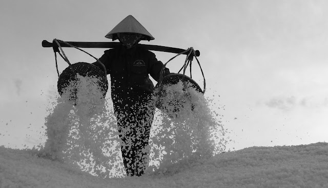 Workers in salt field - Nha Trang, Vietnam