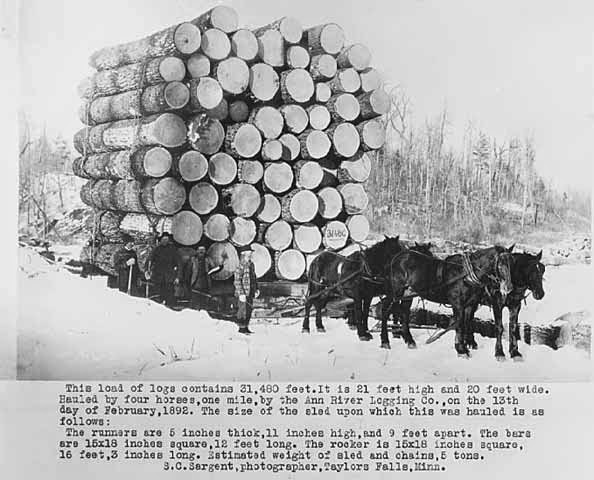 Draft Horse In America 20 Historical Photographs That