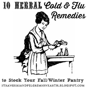 10 Herbal Remedies for Cold/Flu Season