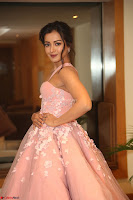 Catherine Tressa looks super cute in strapless sleeveless deep short dress at 64th Jio Filmfare Awards South ~  Exclusive 182.JPG