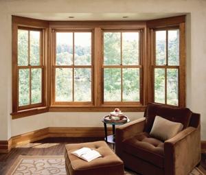 Modern Homes Window Designs