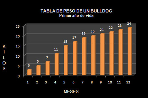 Tabla De Peso Bulldog Ingles