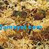 ஹைதராபாத் ஆட்டுக்கால் மட்டன் பிரியாணி செய்முறை | Hyderabad Roti Muttan Biyani Recipe !