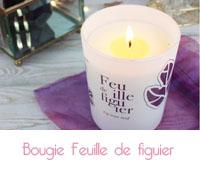bougies Parfumées Léon Panckoucke