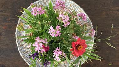 Del jardín al jarrón. Garden bouquet con Pelargonium capitatum