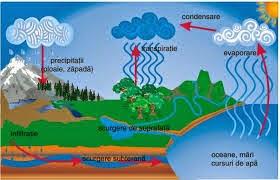 circuitul mic al apei in natura)