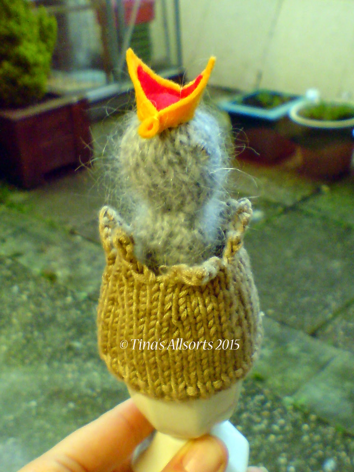 Tina's Allsorts baby bird egg cosie