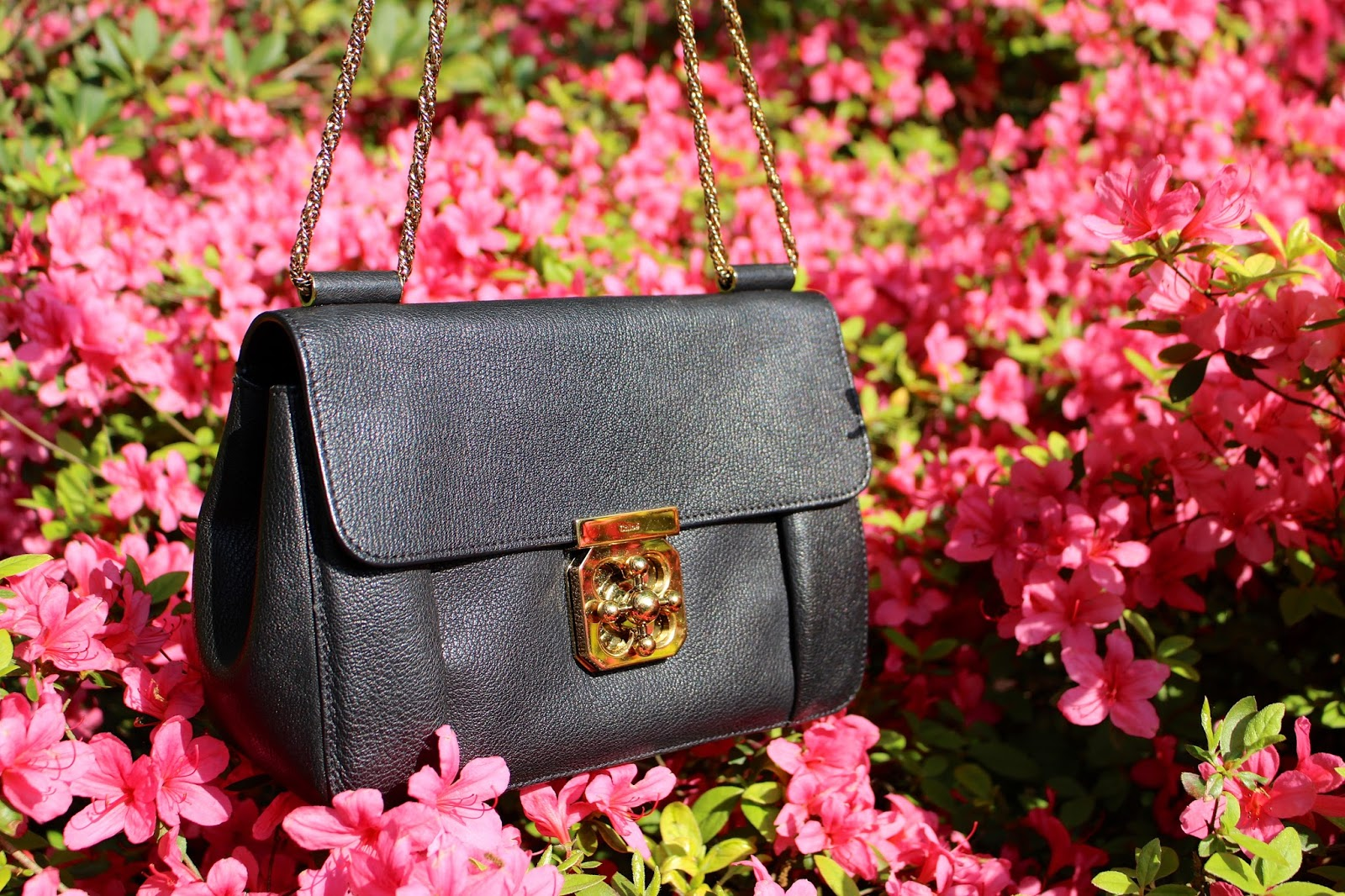 Chloe Elsie designer handbag photography