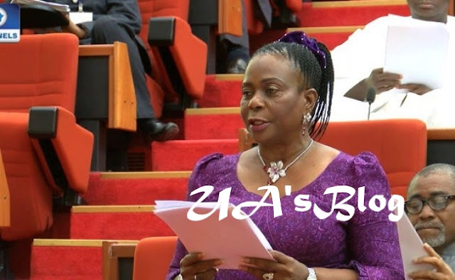 Drama At National Assembly As Senator Orders Staff To Be Slapped For Entering Lift With Her