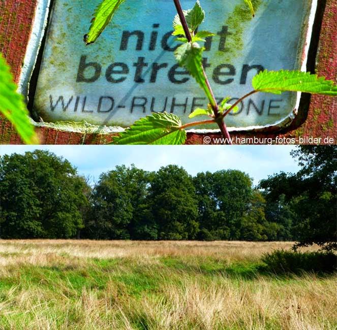 Wild Ruhezone im Naturschutzgebiet