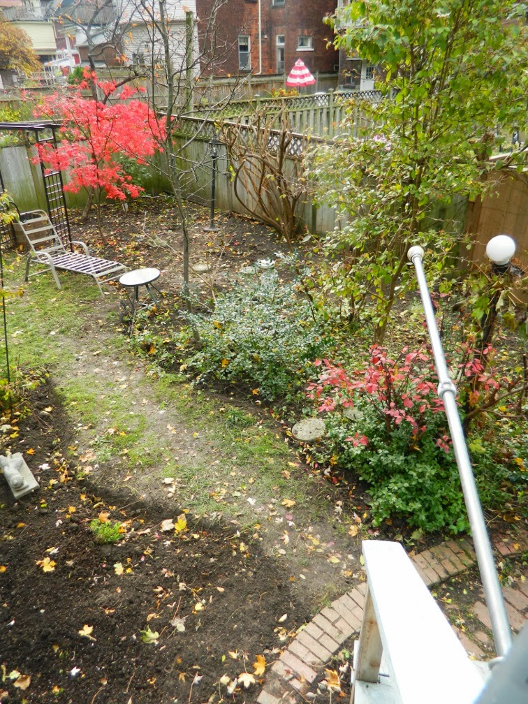 Toronto garden cleanup Annex Paul Jung Gardening Services west side after