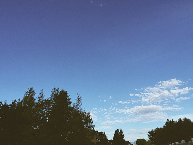Blue sky with trees and a cloud