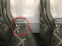 Wanita Ini Girang Kursi Pesawat di Sebelahnya Kosong, Tapi Mendadak Saja Bencana Ini Terjadi !!