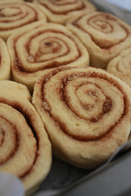 Americas Test Kitchen Cinamon Rolls
