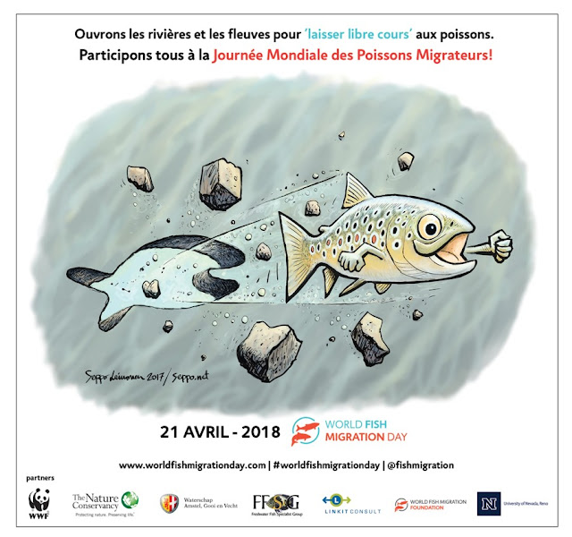 https://www.worldfishmigrationday.com/home