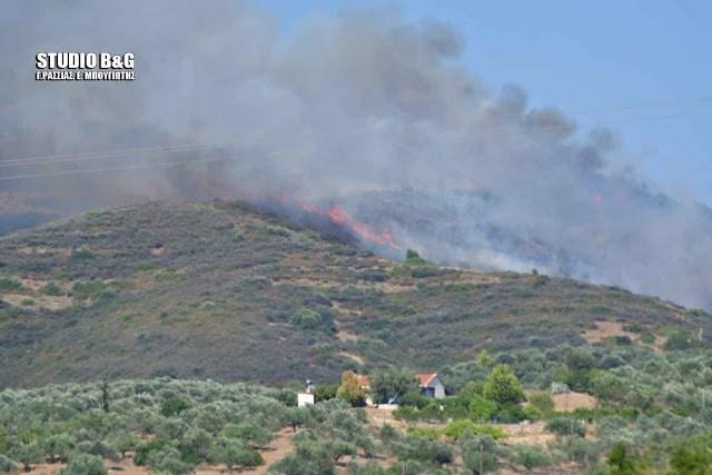 Αργολίδα: Πυρκαγιά στο Μοναστηράκι